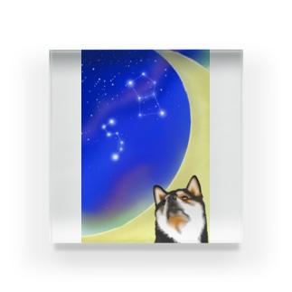 (黒柴)うちのわんこchanシリーズ 月と星 縦長  Acrylic Block