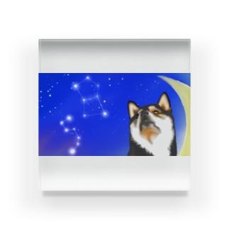 (黒柴)うちのわんこchanシリーズ 月と星 横長  Acrylic Block