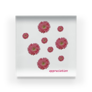 感謝の花 Acrylic Block