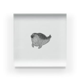アザラシくん Acrylic Block