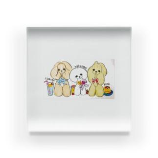 可愛いワンちゃん Acrylic Block