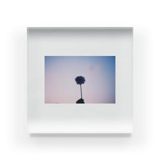 キラメクセカイ-花- Acrylic Block