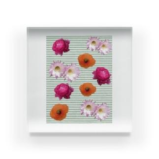 花柄 ×  ボーダー グリーン Acrylic Block