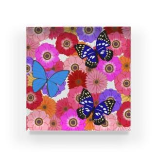 Flower & Butterfly Acrylic Block