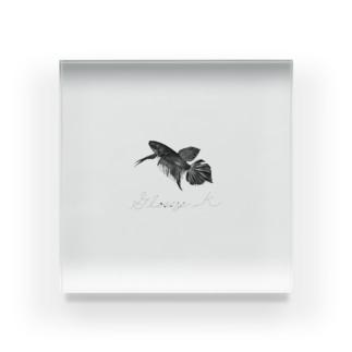 K-DESIREのスマラグティナ ロゴタイプ Acrylic Block