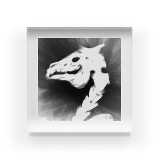 馬骨アイテム Acrylic Block