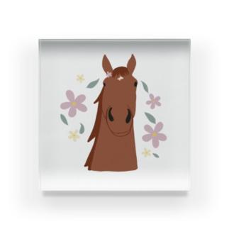 馬とお花(ブラウン) Acrylic Block