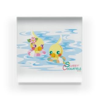 Sweet Cockatiels/浮き輪で海水浴 Acrylic Block