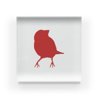 文鳥シルエット(cotoLiロゴ) Acrylic Block