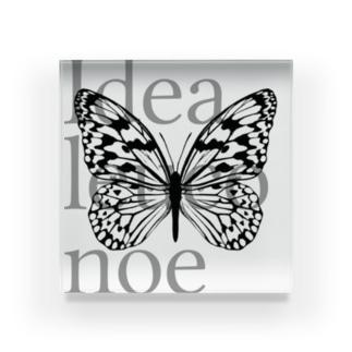 idea leuconoe Acrylic Block
