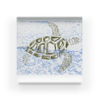 ウミガメ Acrylic Block