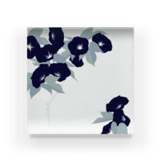 朝顔 Acrylic Block