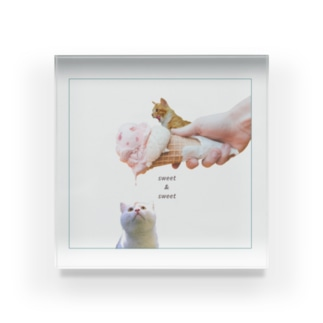 愛す猫 Acrylic Block
