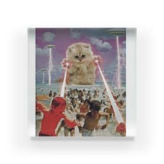 宇宙から猫の襲撃 Acrylic Block