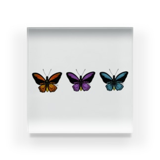 Butterfly (trio) Acrylic Block