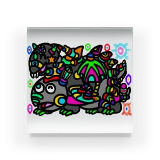 玄武 Acrylic Block