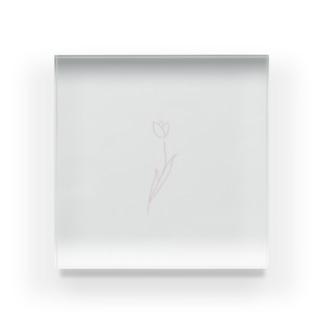淡色線画チューリップ Acrylic Block