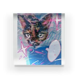 猫のルー Acrylic Block