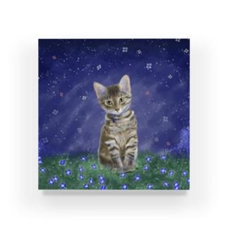 猫たまきの Acrylic Block