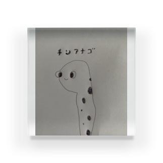 チンアナゴくん Acrylic Block