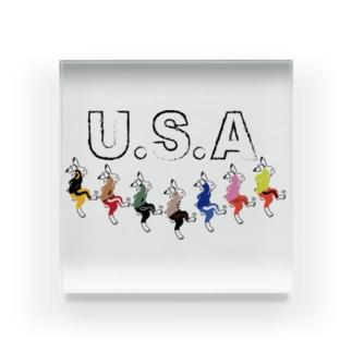 USA(うさ)ダンス Acrylic Block