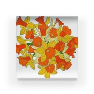 水仙のブーケ Acrylic Block