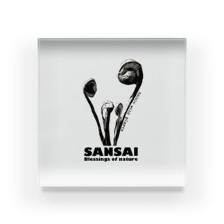 SANSAI Acrylic Block