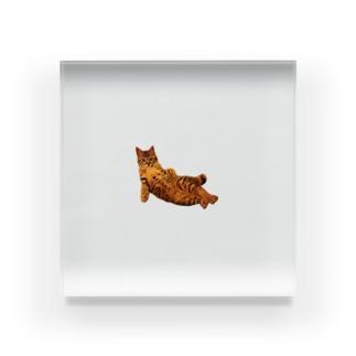 Elegant CatのElegant Cat ② Acrylic Block
