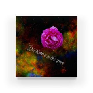 でおきしりぼ子のうちゅうのバラだ Acrylic Block