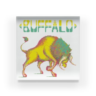 Buffalo Acrylic Block