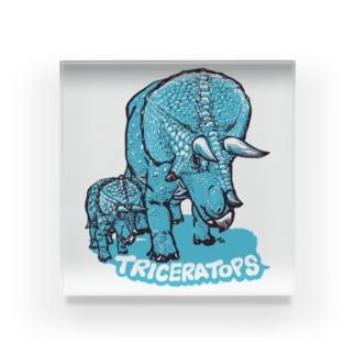 TRICERATOPS(成体と幼体) Acrylic Block