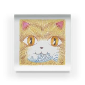 魚をくわえた猫 Acrylic Block
