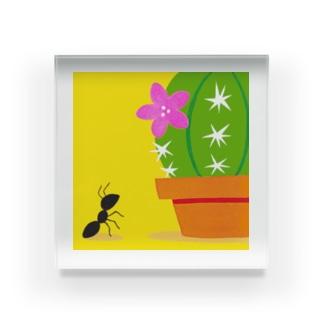 蟻とサボテン Acrylic Block