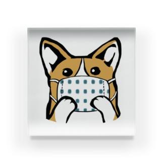 手作りマスクをつけたコーギー Acrylic Block