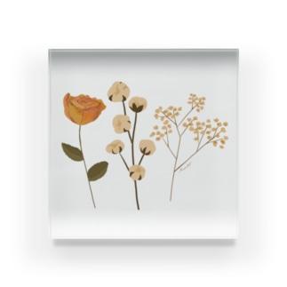 DRIED FLOWER Acrylic Block