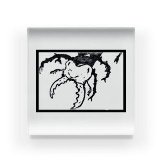 クワガタン(ミヤマクワガタ) Acrylic Block