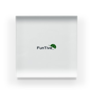 FunTive_ Acrylic Block