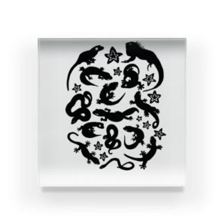 爬虫類たちのシルエット Acrylic Block