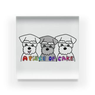 シュナーズ Acrylic Block