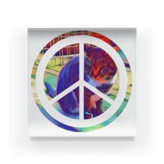 PEACE CAT Acrylic Block