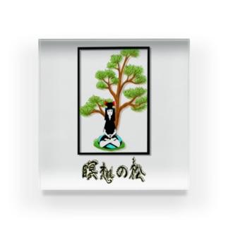 瞑想の松 Acrylic Block