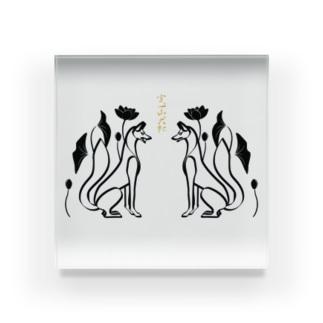 山犬(白) 蓮の花 Acrylic Block