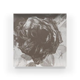 dot-rose #1 Acrylic Block