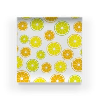 オレンジ&レモン&ライム  Acrylic Block