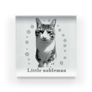 Little nobleman (元野良猫のチビたん) Acrylic Block