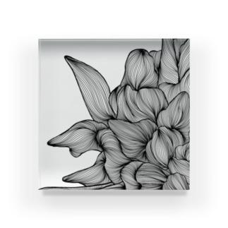 87のhana01 Acrylic Block