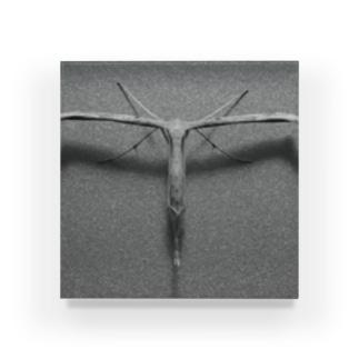 Tとの遭遇 Acrylic Block