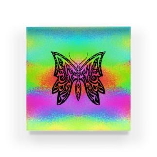 極彩蝶01_Mellow Acrylic Block