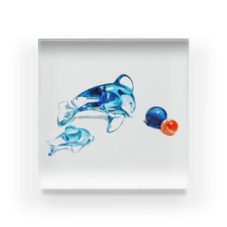 ガラスのイルカ Acrylic Block