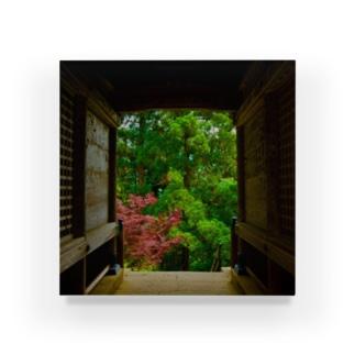 木々と門 Acrylic Block